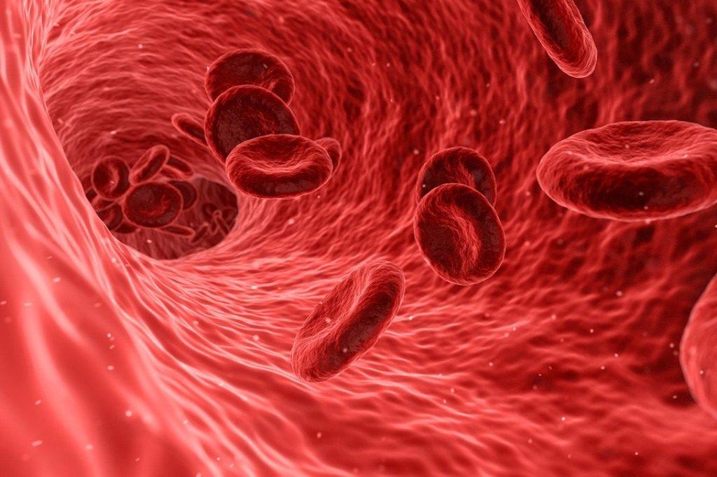Таблица группы крови родителей и детей: совместимость и наследственные факторы